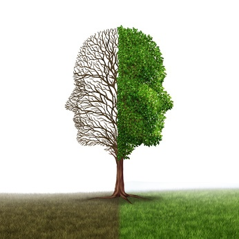 Client Management Mindset for Selman & Company